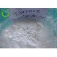 Buy cheap Testos - ph Testosterone Steroids Testosterone Phenylpropionate 1255-49-8 product