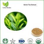 Buy cheap green tea extract bulk,pure green tea extract,green tea p.e.,green tea leaf extract from wholesalers