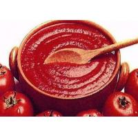 Buy cheap Hot Sell Tomato Paste/Tomato Sauce from wholesalers