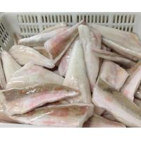 Buy cheap Frozen red gurnard fillets skin-on IQF from wholesalers