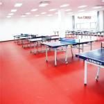 Buy cheap table tennis ping-pong floor, plastic floor, pvc sport floor from wholesalers