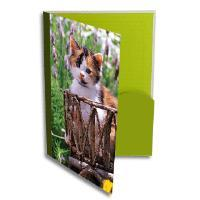 Buy cheap durable pp lever arch file folder from wholesalers