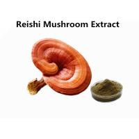 Buy cheap Red Reishi Mushroom Polysaccharides Extract Powder Supports Immune Health Function from wholesalers