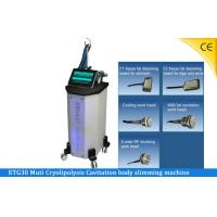 Buy cheap Beauty Salon Lipo Laser Slimming Machine For Body Shaping And Lifting ETG30 from wholesalers