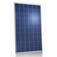 Buy cheap White Frame Polycrystalline PV Module 240 Watt With Self - Cleaning Function from wholesalers
