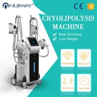 Buy cheap Cool sculption fat freeze slimming machine weight loss body slimming cryolipolysis machine from wholesalers