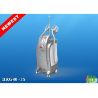 Wholesale BEIR 3S Salon Slimming Coolsculpting Lipofreezing Fat Machine from china suppliers