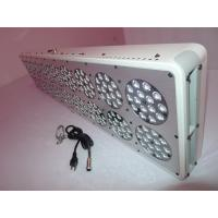 New Hydroponics Lighting Plant Led Grow Light For Flowering Plant Manufactures