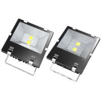 High Lumen 19500lm 100W Outdoor LED Floodlight For Power Station Manufactures