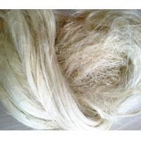 Buy cheap Gypsum material 100% rubber fibre natural raw bleached textile uv ug grade sisal fiber price from wholesalers
