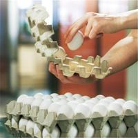 Buy cheap Egg tray packaging machine from wholesalers