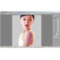 Wholesale Best lenticular photo printing  lenticular photo printing software for 3d puzzels from china suppliers