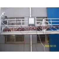 Wholesale Suspended Powered Platform (ZLP1000 type) from china suppliers