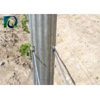 Buy cheap 4M Galvanised Steel Vineyard Posts With W - Shaped Section Silver Color from wholesalers