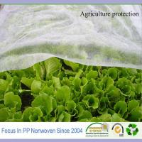 Wholesale Spunbond pp non-woven agriculture cover fabric from china suppliers