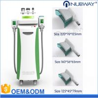 Buy cheap Cryolipolysis cool shaping freezing fda approved laser weight loss machines 5 cryo handle fat removal machine 2019 from wholesalers