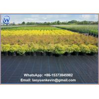 Buy cheap 40 x 300 ft Ground Cover Nets Weed Control Landscape Fabric from wholesalers