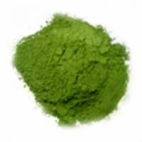 Wholesale Dehydrated Spinach Powder from china suppliers