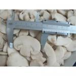 Buy cheap Frozen Champignon Mushroom from wholesalers