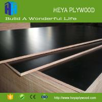 Buy cheap Laminate 9mm 12mm 15mm 18mm plywood chinese wholesale companies from wholesalers