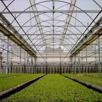 Buy cheap Mordern Polycarbonate Sheet Intelligent Greenhouse from wholesalers