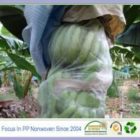 Wholesale Good quality fabric agriculture banana protect bag from china suppliers