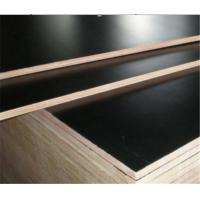 Buy cheap Construction Grade 19mm Wbp Plywood Sheets 1220mm*2440mm Size No Cracking from wholesalers