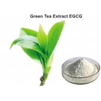 Buy cheap EGCG Green Tea Extract Powder Super high content  Anti - tumor effect for pharmaceutical industries from wholesalers