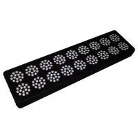CE  High Power Led Grow Lights For Indoor Plants , AC85 - 264v Manufactures