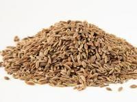 Buy cheap High Quality Celery seed extract from wholesalers