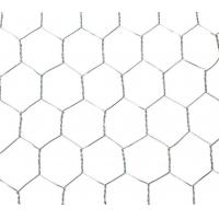 Buy cheap Steel Hexagonal Wire Netting For Chicken / Ducks / Gooses / Rabbits Feeding from wholesalers