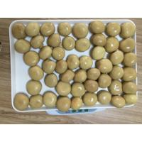 Buy cheap Factory Price NEW SEASON Brown Canned Champignon Mushroom Whole in Brine N.W.2840G from wholesalers