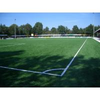 Buy cheap Waterproof Natural Looking Artificial Grass Football Pitches Fake Grass Carpet from wholesalers