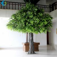 Wholesale Tall Artificial Ficus Tree For Office Decoration 3m Height Environmentally Friendly from china suppliers
