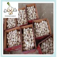 Buy cheap Snow White Garlic Natural White Fresh Garlic from China from wholesalers