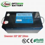 Buy cheap 12v 300ah E-Bike Lifepo4 Battery Rechargable Electric Bike Batteries from wholesalers