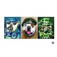 Wholesale PET / PP Animal Print Lenticular Posters For Home Decoration SGS from china suppliers