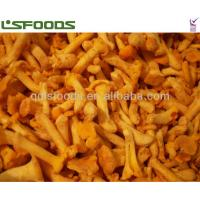 Buy cheap frozen chanterelles from wholesalers