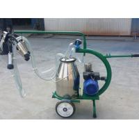 Buy cheap Stainless Steel Four Piston Mobile Milking Machine , Small Electric Cow Milker from wholesalers