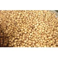 Fresh Vegetable Long Organic Potatoes Contains Vitamins And Minerals, Fine quality, good taste Manufactures