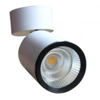 110Lm / W 10w Indoor Use Led Ceiling Downlights Pure White Energy - Saving