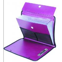 Buy cheap Special Expanding File Bag with Elastic Strap from wholesalers