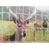 Buy cheap Galvanized Deer Fence from wholesalers