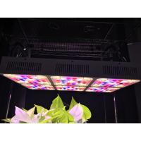 Buy cheap Aluminum 570w Full Spectrum Grow Light LED CREE COB With CE RoHS Approval product