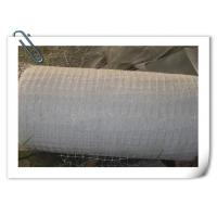 Buy cheap Horizontal Plastic Climber Plant Supporting Net , Extrusion Type Green Plastic Netting from wholesalers