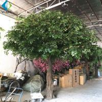 Wholesale Fiberglass Trunk Artificial Ficus Tree For Hotel Exhibition Hall Ornament from china suppliers