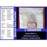 Buy cheap Raw Steroid Powder 1-Testosterone Dihydroboldenone / DHB CAS 65-06-5 from wholesalers