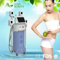 Buy cheap cryolipolysis fat loss cold body sculpting machine with 4 handles from wholesalers