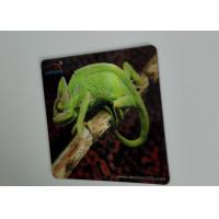 Buy cheap Oil Varnishing 3D Lenticular Funny Refrigerator Magnets UV Offset from wholesalers
