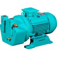 Buy cheap Shanghai Yulong 0.75KW cast iron liquid ring vacuum pump for autoclave sterilizer from wholesalers